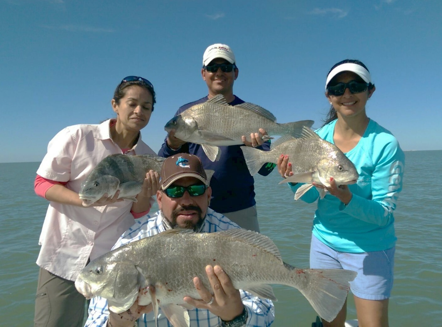 Limit of Black Drum
